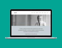 Website design for Anni Townend