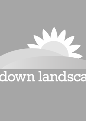 Sundown Landscapes Logo